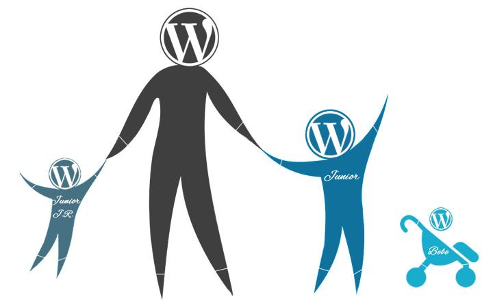 Como Instalar Plugins y El Tema Hijo En tu Blog - cesar